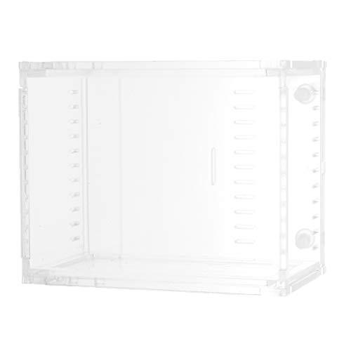 FLAMEER Transparent Terrarium Zuchtbox Fütterung Tank für Reptilien, Frosch, Wasserschildkröte, Spinne