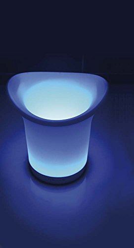 Vin Bouquet FIE 027 - Cubitera de luz led