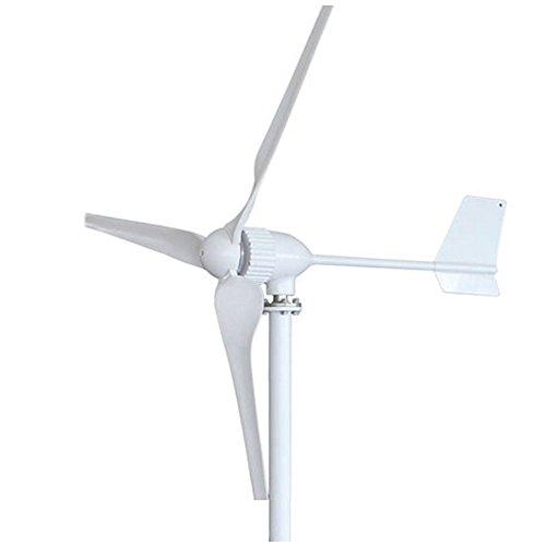 Aerogenerador-TOPQSC-Generador-de-Turbina-Elica-8001000W-DC-2448V-Generador-de-Viento-con-Alta-Eficacia-3-Hojas-Turbina-de-Viento-con-la-Vida-de-10-aos