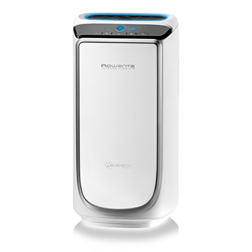Rowenta Intense Pure Air PU4020F0 Purificador de