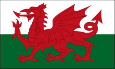 Flagge Fahne Drachen (Wales) 90x150cm