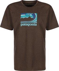 Patagonia Framed Fitz Roy T-Shirt Pinecone Brown