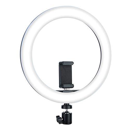 Mugast Tragbares Verstellbares LED Ringlicht, USB-Fotoringfülllicht mit Kugelkopfhalter für Telefon/Tablet/Laptop/Kamera(10 Zoll) (80 Artikel Dollar)