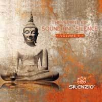 Preisvergleich Produktbild The Spirit of Sound and Silence Vol.9