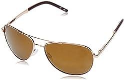 Fila Mirrored Aviator Mens Sunglasses - (SF973461531KSG|61|Smoke and Red Revo Coating Color)