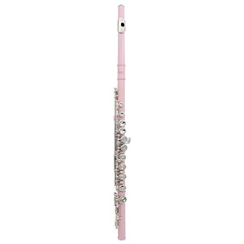 Farbe 16 Taste C Verstellbare Silberflöte, Anfänger Spielen Universal Flöte Instrumentenzubehör-Set ( Color : Pink )