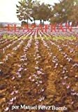 El azafrán : historia, cultivo, comercio, gastronomía