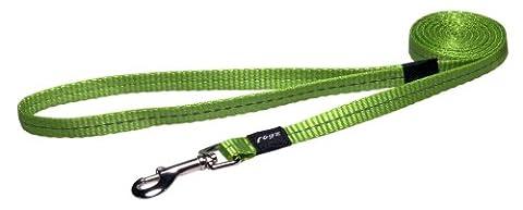 Rogz Utility Petite 3/20,3cm réfléchissant Nitelife fixe de 1,8m de long Laisse pour chien