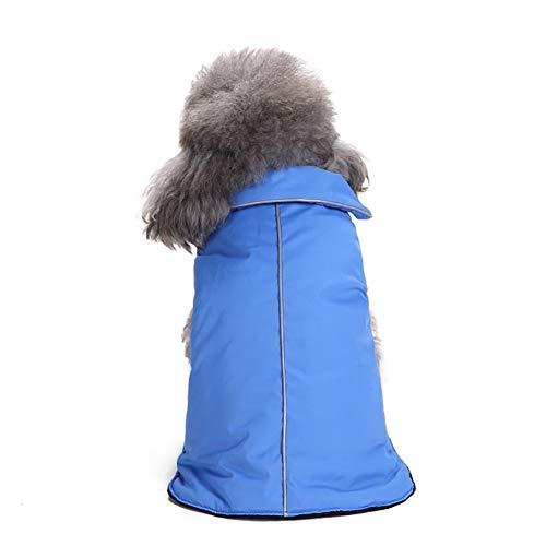 Bluelucon Haustier Kostüm Hund Kostüm Kleidung Haustier Outfit Anzug Cowboy Rider Style, passt Hunde Gewicht unter 7 ()