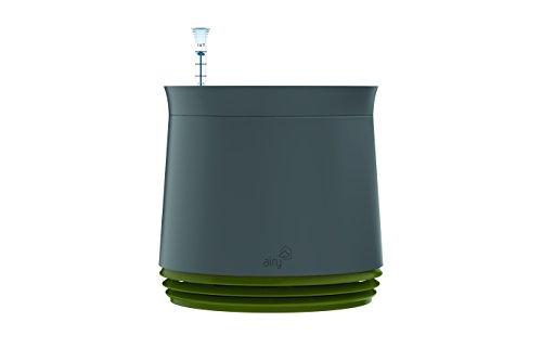airy-hochwirksame-luftreinigung-mit-zimmerpflanzen-in-steingrau-late-spring-grun