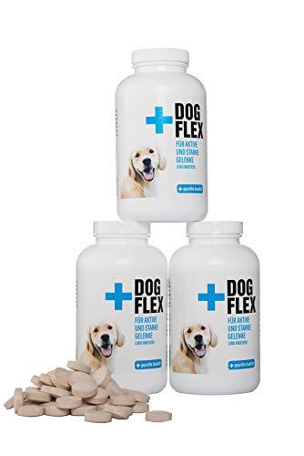 Flex Vorratspackung Dog Nahrungsergänzungsmittel Gelenke für Hunde 3x150 Tabletten I Grünlippmuschelpulver Hund I enthält Glucosamin, Chondroitin, MSM, Teufelskralle hochdosiert für Ihren Vierbeiner