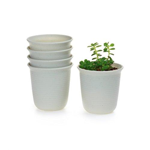 t4u-lungo-tondo-plastica-vaso-di-fiori-pianta-succulente-cactus-vaso-di-fiori-contenitore-impianto-v