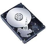 Seagate Barracuda 7200.10 250GB Festplatte 8,89 cm (3,5 Zoll) 7200 upm