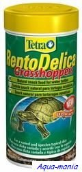 Turtle food Grasshoppers Repto