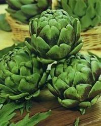 JustSeed - Gemüse - Artischocke - Green Globe - 60 Samen