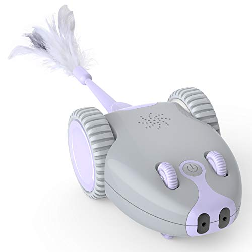 DADYPET Katzenspielzeug, Roboter Maus, Mausspielzeug, automatische Bewegung durch den Raum, über USB aufladbar, elektronisches Spielzeug mit 5 Ersatzfedern für Kätzen, für alle Böden geeignet