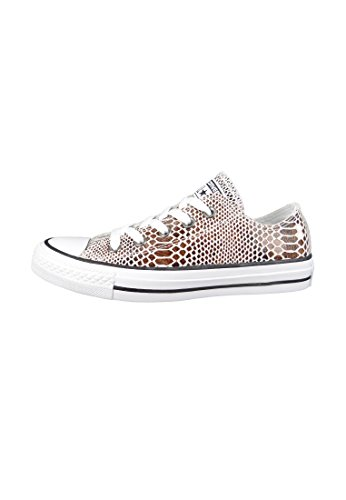 Converse All Star Ox Donna Sneaker Marrone Brown Black White