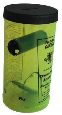 Trampa avispas con cebo - mata avispas fácil de usar y eficaz - trampas seguras