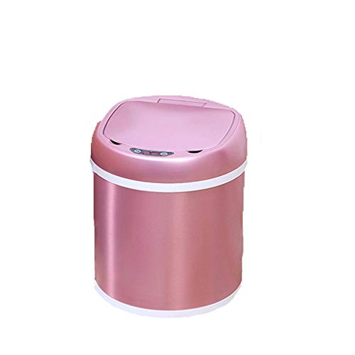 Lincjly ttkc Multifunktionssensor, Bewegungssensor aus Edelstahl, Automatik mit geruchsabsorbierendem Filter, Sensor für weit geöffneten Sensor in der Küche (Color : Rose Gold, Size : 12L) -