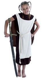 Fun Shack Disfraz de vikingo para niña, talla L (8 - 10 años) (2499-400L)