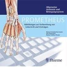 PROMETHEUS Allgemeine Anatomie und Bewegungssystem. DVD ab Windows 98 SE oder Mac . Abbildungen zur Vorbereitung von Unterricht und Vorträgen