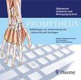 PROMETHEUS Allgemeine Anatomie und Bewegungssystem. DVD ab Windows 98 SE oder Mac . Abbildungen zur Vorbereitung von Unterricht und Vortr�gen Bild