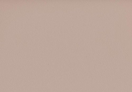 Volvox | Espressivo Lehmfarbe | Bunttöne 2 | Biofarbe | 2,5 Liter | 20 m² (sand beige | 175)