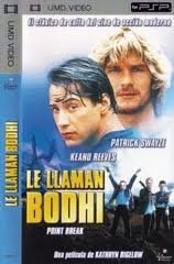 le-llaman-bodhi-umd-video
