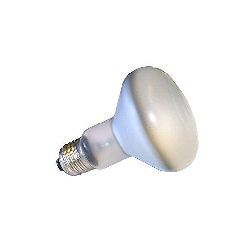 Philips Flower Power Glühbirne Reflektor R80 100W E27 Neodym Pflanzenlicht Glühlampe 100 Watt matt