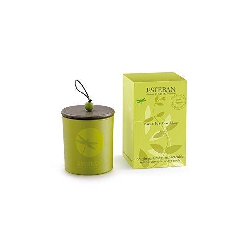 Esteban Ambientador nachfüllbare decorativa vela aromática Sous Les Feuilles 150g