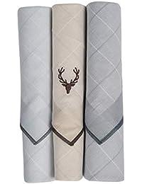 Allen Solly Men's Cotton Handkerchief (ASC3HPABA00034_Multi_One Size)