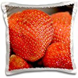 ps-photography-juicy-red-strawberries-fruit-photography-16x16-inch-pillow-case