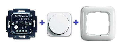 Busch Jäger Komplettset Serienschalter/Drehdimmer UP, RL, 60-400 W 6517U-101 komplett mit Drehscheibe Beleuchtung und Rahmen 6517U-101