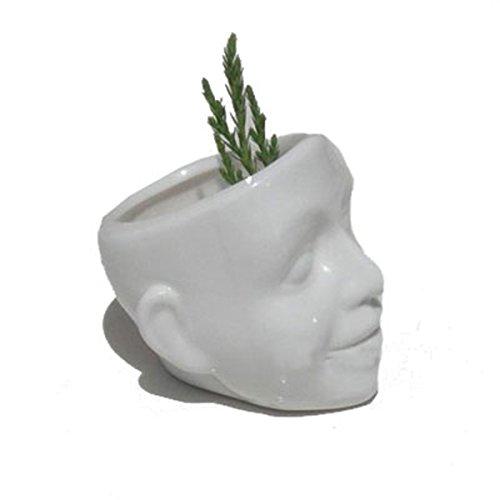 Töpfe Weiß Schädel Lächeln Gesicht Gedruckt Blumentopf Zuhause Desktop Garten Dekor,Gesicht ()