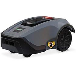 Robot tondeuse 1200m2 - Nestor - AutonoMAX, Batterie Lithium 4,4 Ah, écran LCD, mulching, avec 200m de périmètre