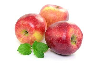 Fruchtknall Apfel Elstar 1 kg