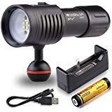 Evolva Future Technology D02 Unterwasser 100M Taschenlampe Tauchen Video Tauchbrenner Tauch Fackel / Fotografie Licht (Fackel + Batterie + Ladegerät)