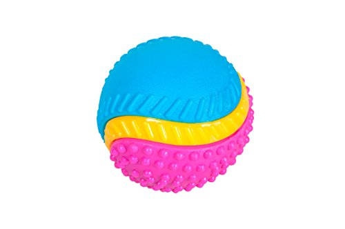 Sharples Beef Scented Five Senses rubber ball for dogs, medium