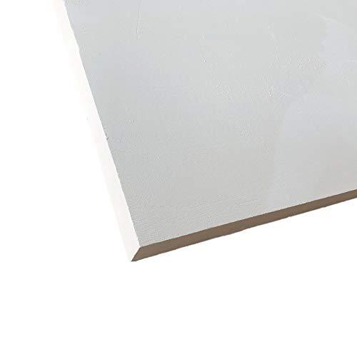 skamol Kalziumsilikatplatte 500 x 610 x 40mm