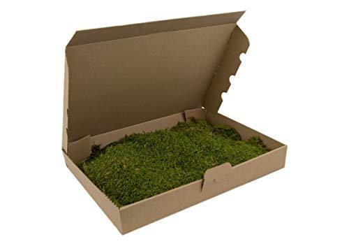 Flachmoos Moosmatte Moosplatte Plattenmoos Natur Deko Moos echtes Moss Osterdeko Frühlingsdeko Deko-Moos frisches Natur Moos