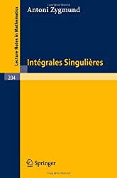 Integrales Singulieres (Lecture Notes in Mathematics)