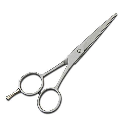 Ciseaux de Coiffure Coupe des Cheveux - 6.5''' - Ciseaux de Coiffure pour Coiffeurs ou Salon de coiffure - Usage Familial et Professionnel, Argent