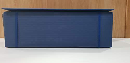 Carpeta De Proyecto Exacompta Din A4 Lomo Hasta 130 Mm Extensible Con Tira De Velcro Colores Surtidos 10 Unidades