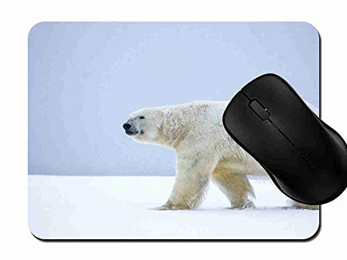 Mauspad Eisbär Alaska Rutschfeste Gummi Basis Mouse pad, Gaming und Office mauspad für Laptop, Computer PC 1H778 -