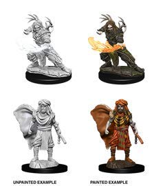 Dungeons & Dragons Nolzur's Marvelous Unpainted Minis: Male Human Druid