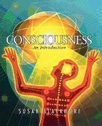 Consciousness, an Introduction