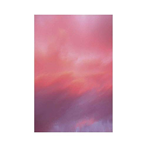 Liumiang Eco-Friendly Manual Custom Garden Flag Demonstration Flag Game Flag,Coral,Beautiful Vanilla Sky with Clouds Tenderness Dreamy Unreal Soft Heavenly,Light Pink Coral Lilac d¨¦COR