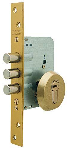 Tesa Assa Abloy R101B566E Cerradura Monopunto de Seguridad para Puerta