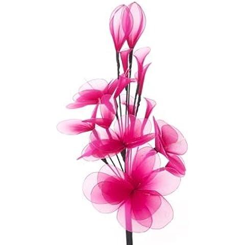 16testa lotus Nylon Gossamer–Bello Fiori con display Scegliere il colore (Rosa Ciliegia)