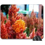 a-flower-garden-at-epcot-mouse-pad-mousepad-flowers-mouse-pad